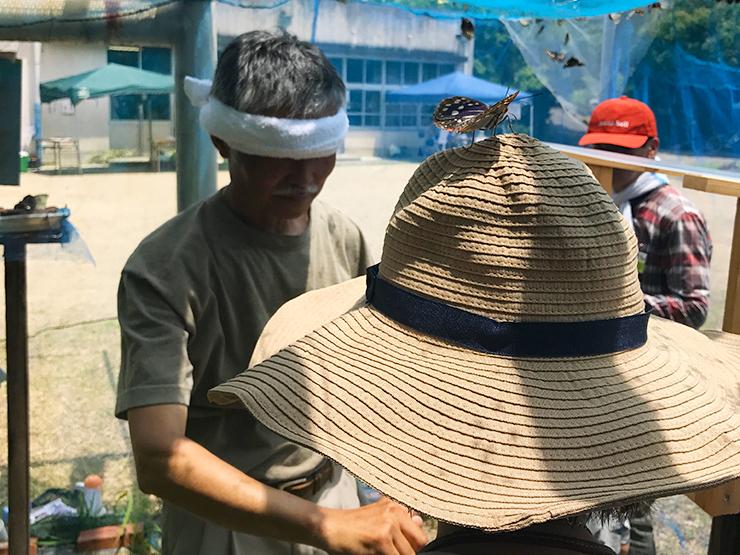 オオムラサキ祭り